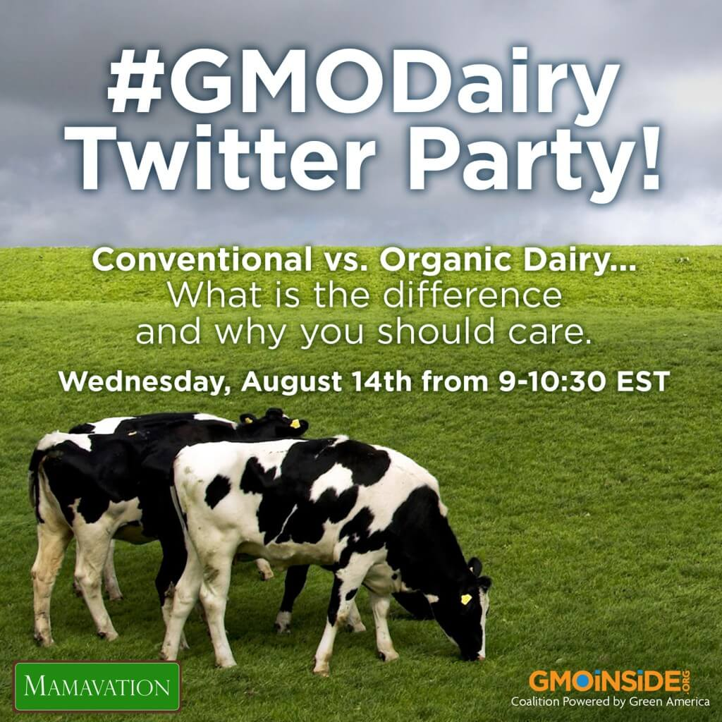Mamavation GMO Dairy Twitter Party