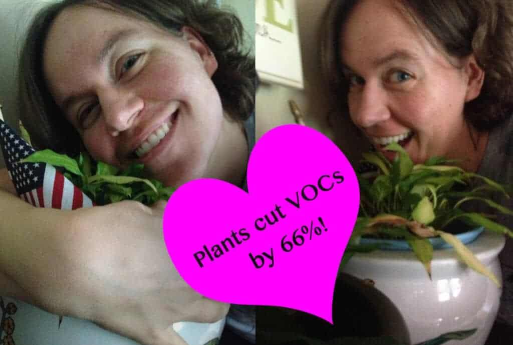 plants vocs