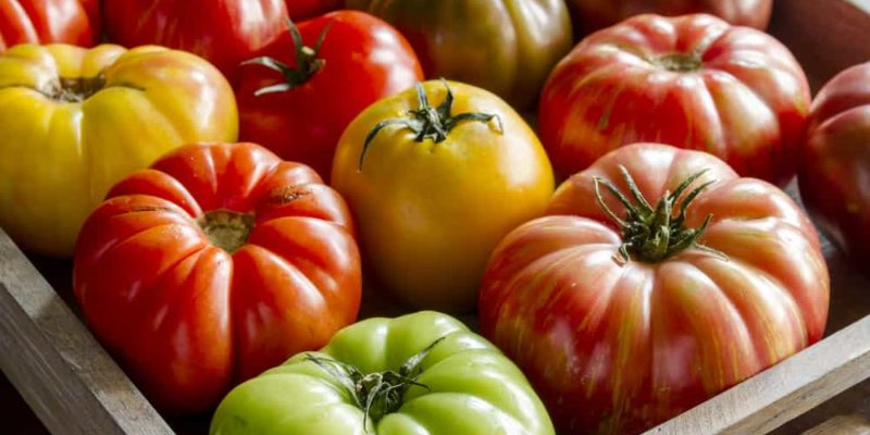 How to Can Tomatoes to Avoid BPA--Canning 101 for Beginners 5