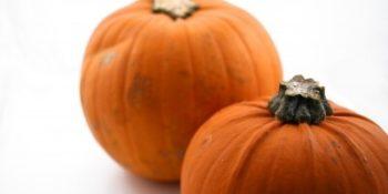 Vegan & Dairy Free Low Glycemic Pumpkin  Pie Recipe