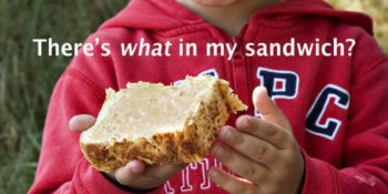 There's WHAT in My Sandwich? Detoxing Unhealthy Peanut Butter