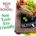 nontoxic ecofriendly school lunhces