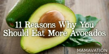 Eat More Avocados: 11 Reasons Why You Should