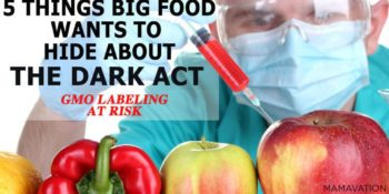 Top 5 Things Big Food Wants to Hide from You About the DARK Act