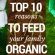 Top 10 Reasons to Feed Your Family Organic Food 2