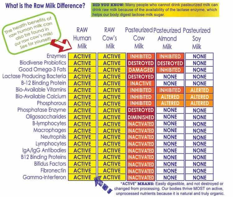Raw Milk Comparison Chart- WB Benefits of raw milk