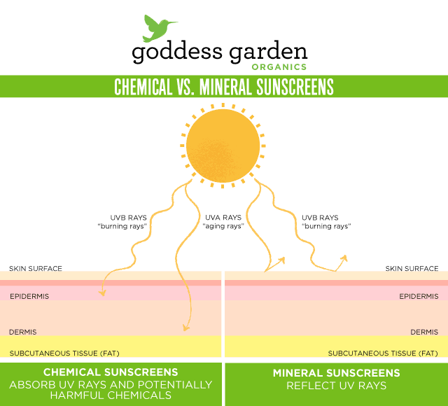 Chemical-vs.-Mineral-Sunscreens