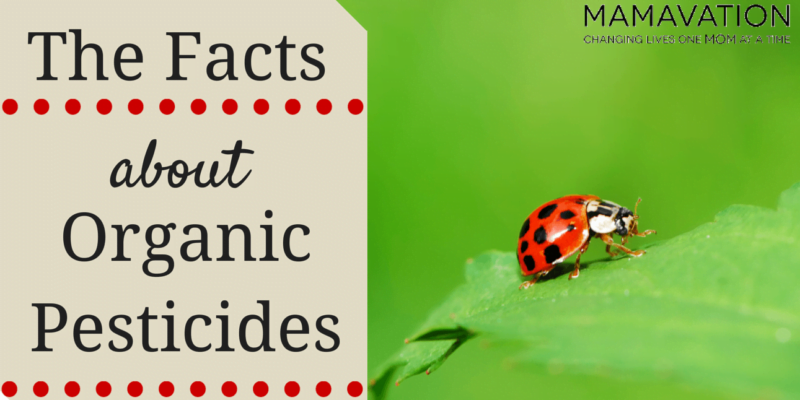 The Facts About Organic Pesticides
