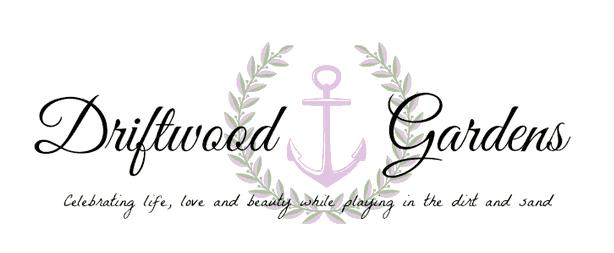 driftwood gardens - jen leeman