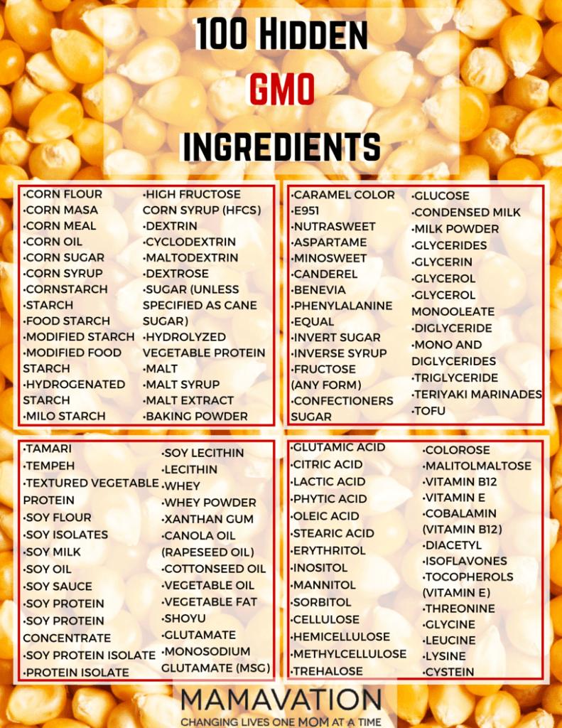 100 HIdden GMO Ingredients