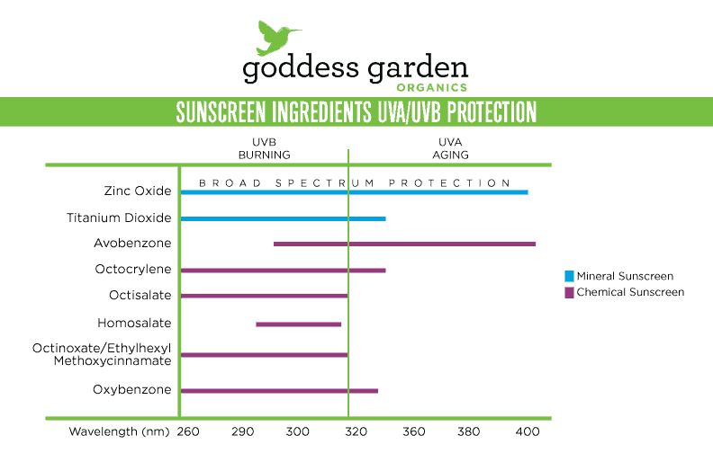 Sunscreen-Ingredients-UVA-&-UVB-protection