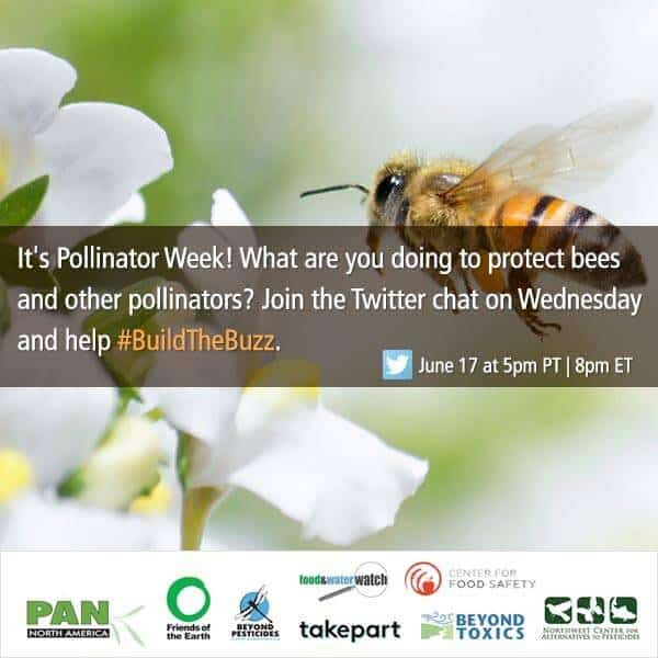 Build The Buzz from Pesticide Action Network, help bees