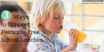 3 Ways to Support Pesticide Free School Lunches
