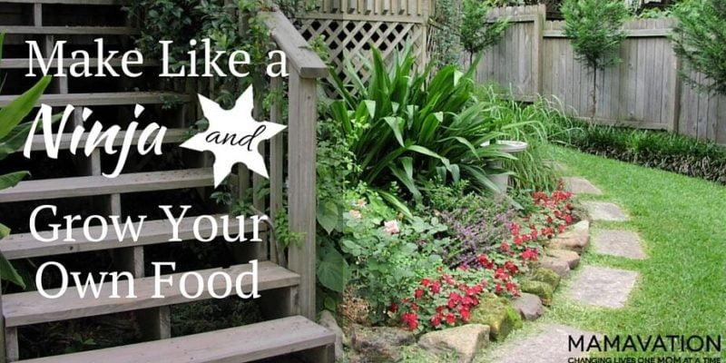 Make Like a Ninja and Grow Your Own Food
