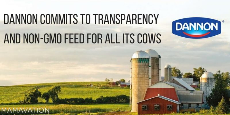 Dannon: Transparency and Non-GMO Feed for All its Cows