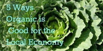 Organic food farming: 5 Ways it's Good