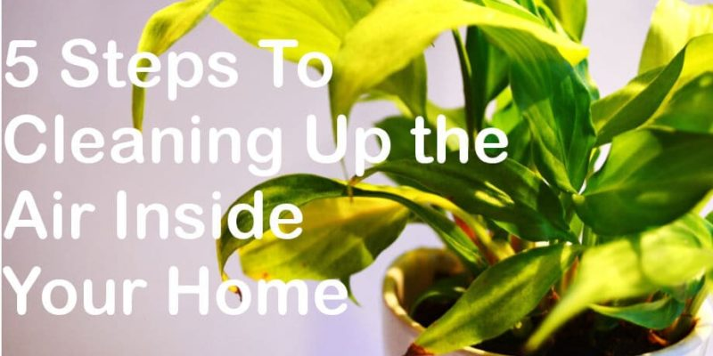 Cleaning Up the Air Inside Your Home in 5 Easy Steps
