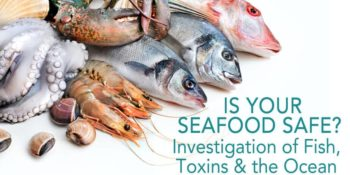 Is your seafood safe?