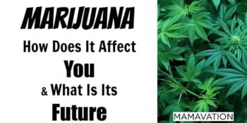 Marijuana: How Does It Affect You & What Is Its Future? 5