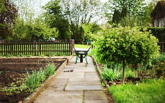 Three Ways Gardening Makes You Happy 5
