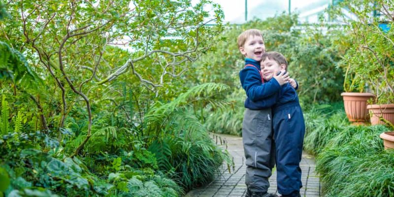 How to Make Your Kids Enjoy Gardening Even in Winter 4