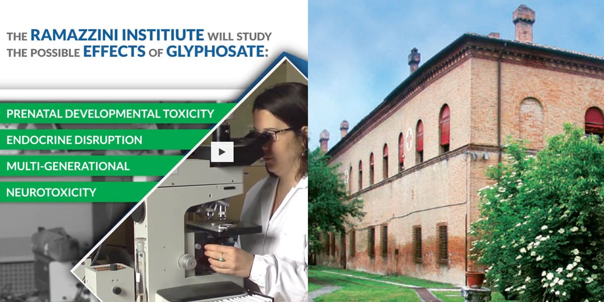 ramazzini glyphosate crowdfunding study