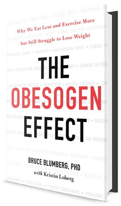 obesogens and weight gain