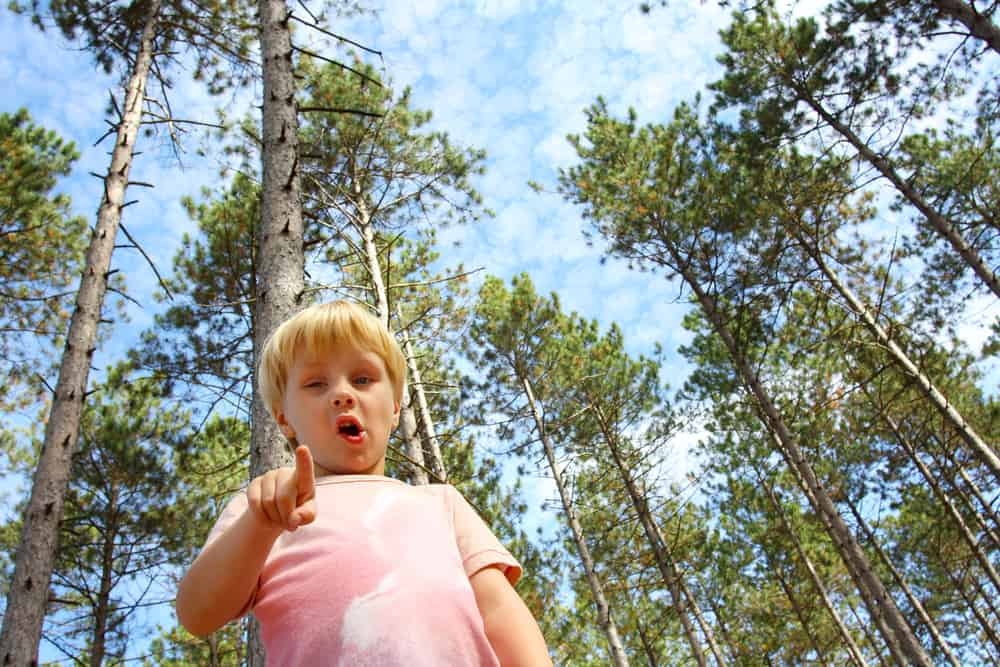 How to keep kids safe from smoke pollution from wildfires