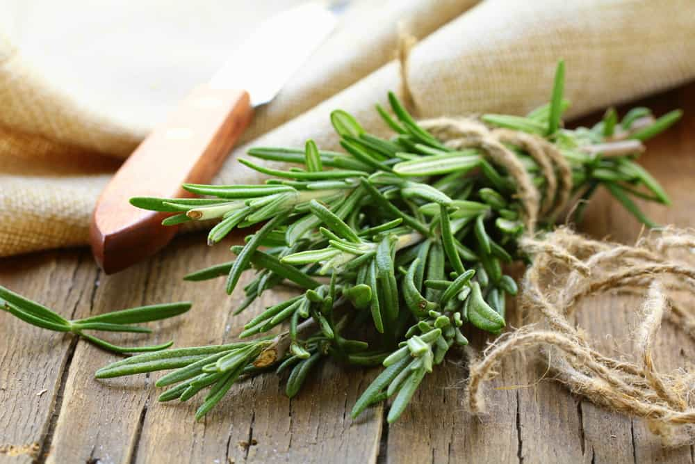 5 herbs you can grow in your backyard that help with flu season