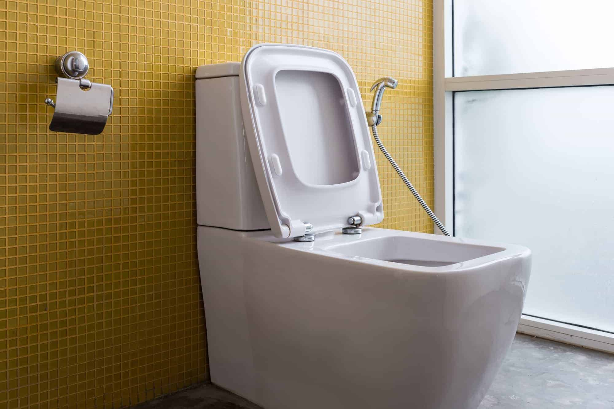 bidet in front of yellow tile