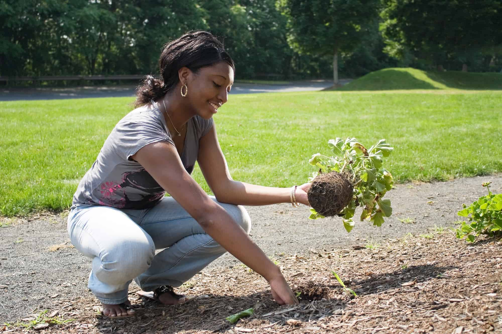 A young woman planting in her garden