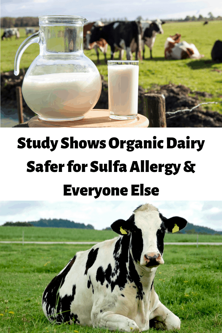 Study Shows Organic Dairy Safer for Sulfa Allergy Sufferers & Everyone Else