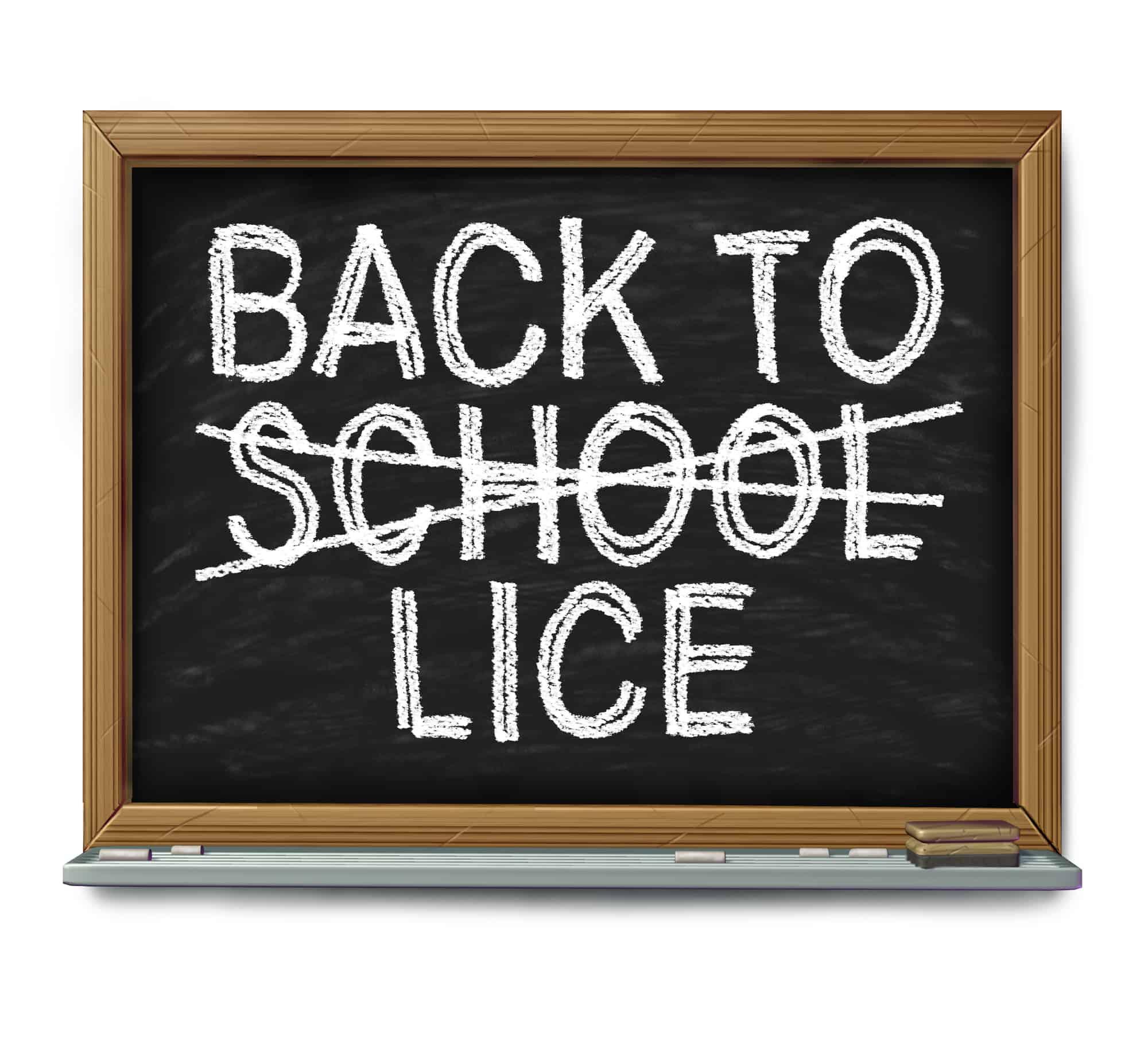 back to school lice written on chalkboard