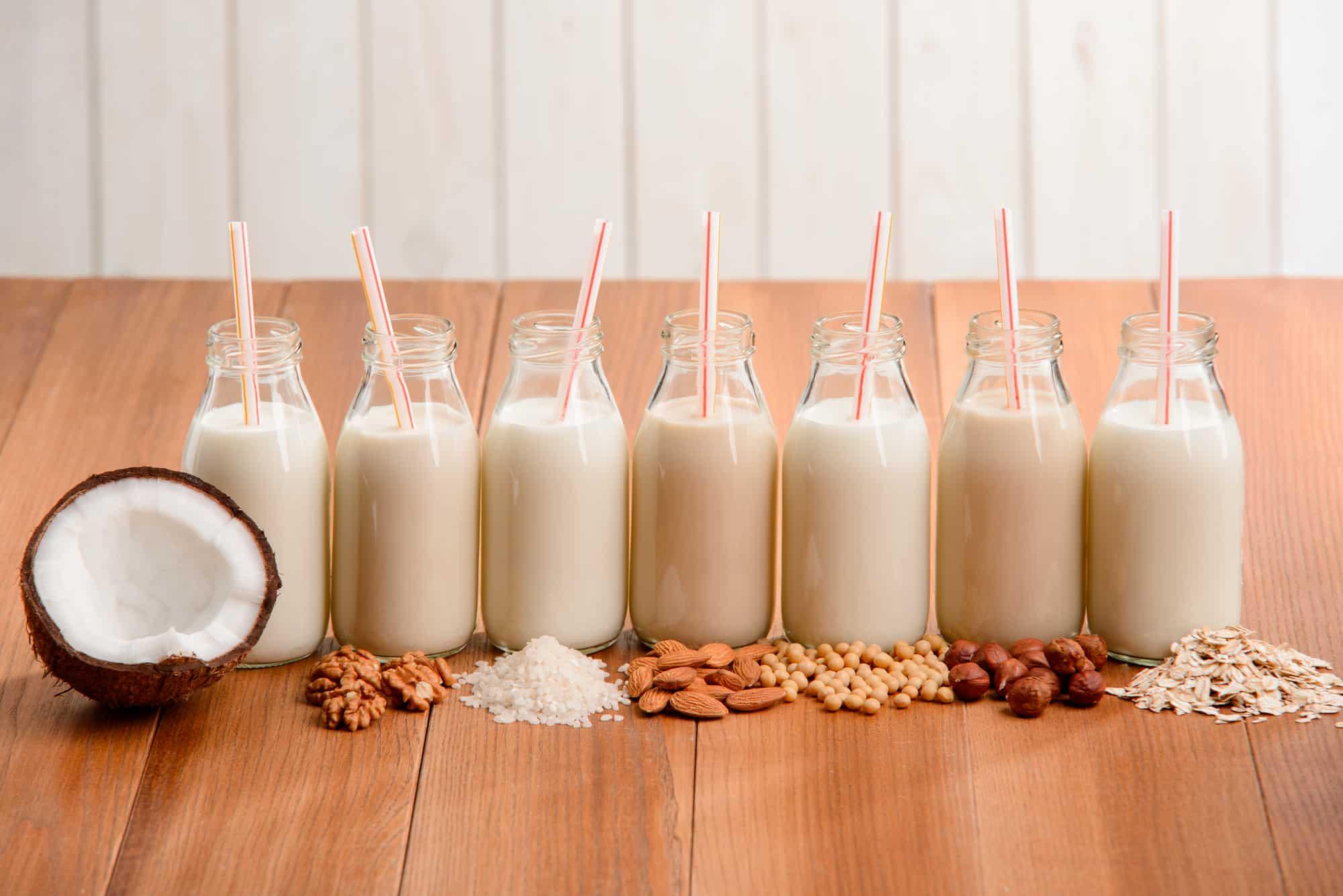 Bottles of assorted vegan drinks: coconut, walnut, rice, almond, soy, hazelnut and oatmeal milks.