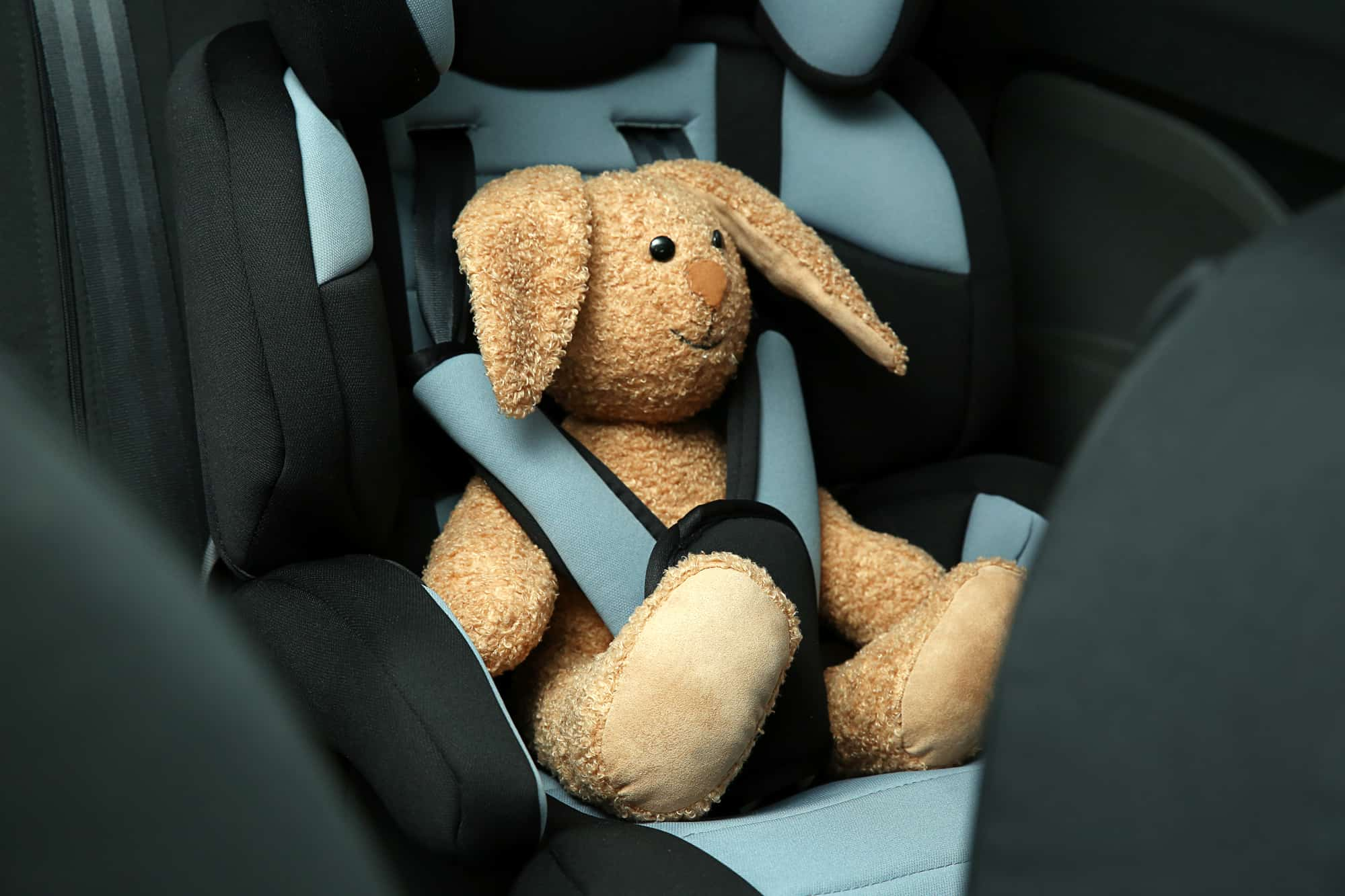 Toy bunny sitting in baby safety seat