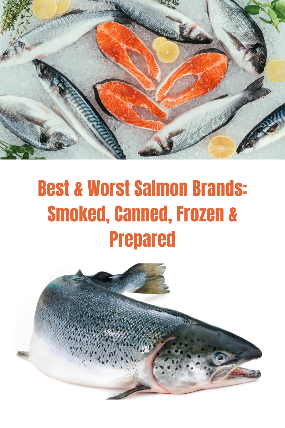 Best & Worst Salmon Brands--Smoked, Frozen, Canned & Prepared 1