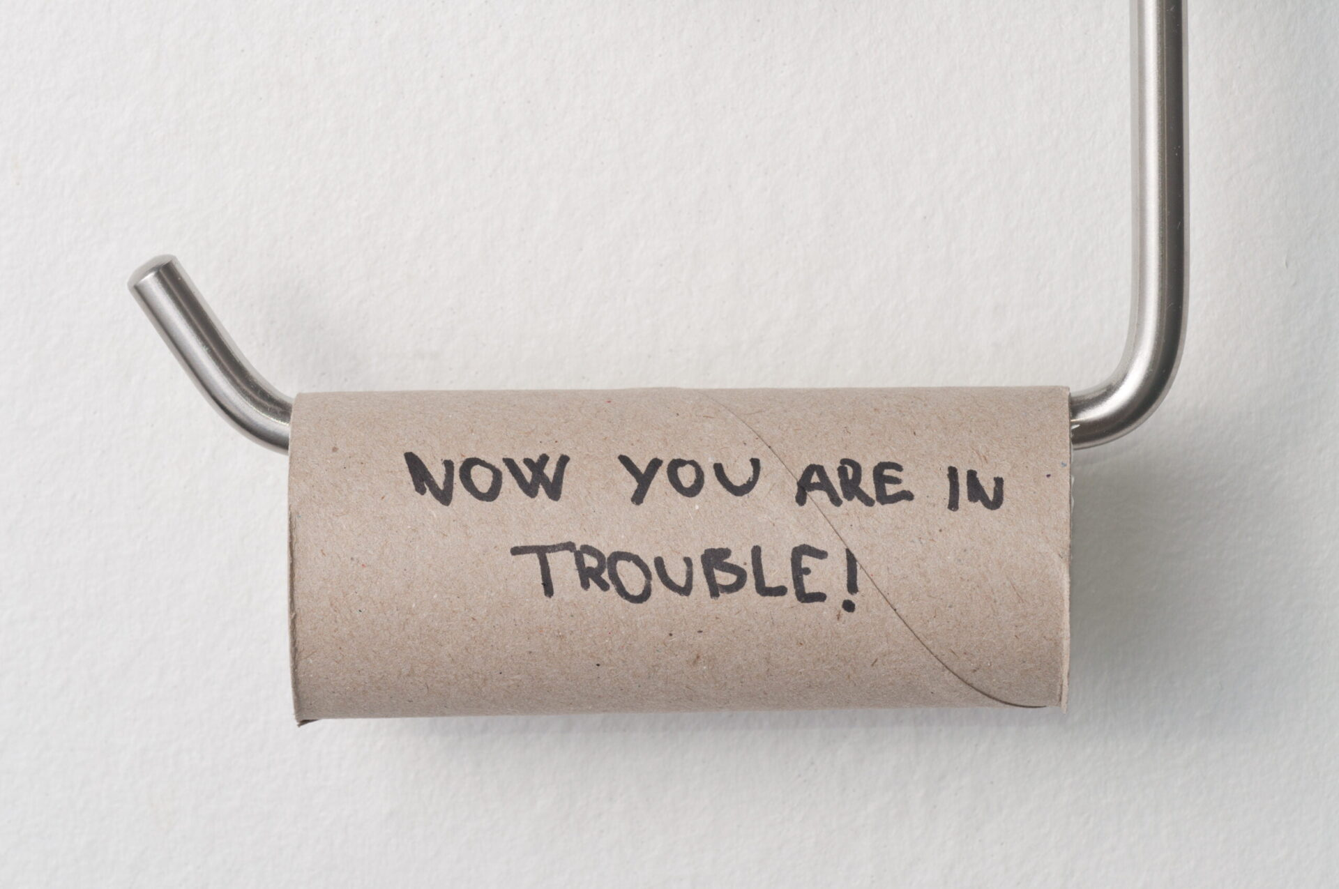 Now you're in trouble toilet paper roll