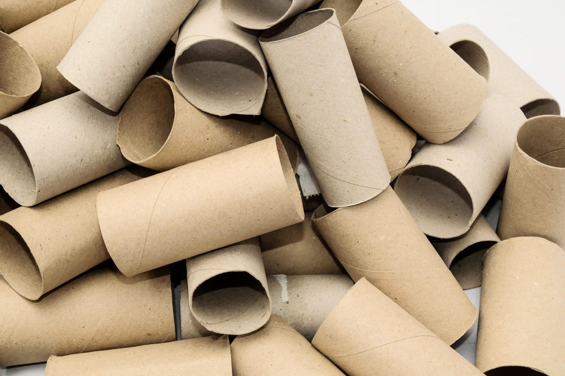 dozens of toilet paper rolls