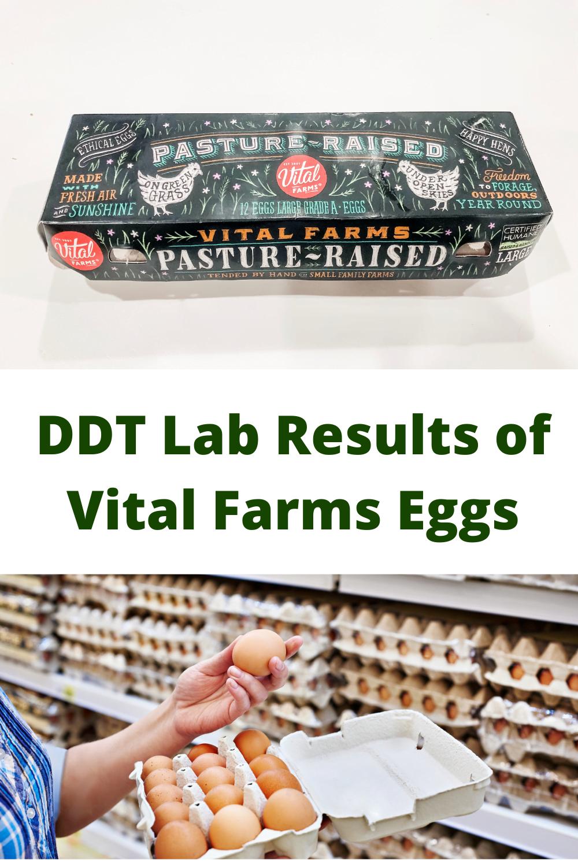 DDT Test Results--Vital Farms Eggs 1