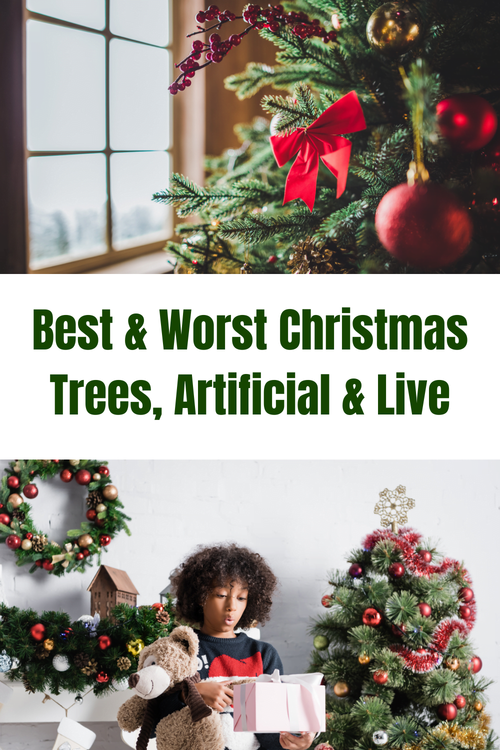Best & Worst Christmas Trees, Artificial & Live