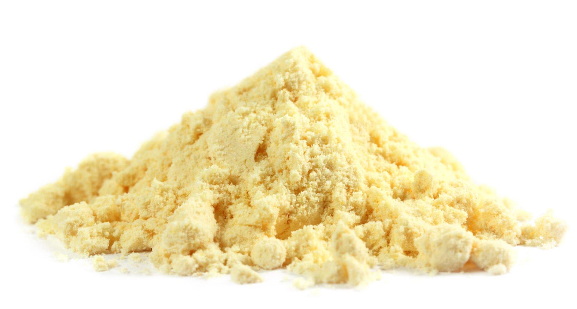 organic pea protein in powder form