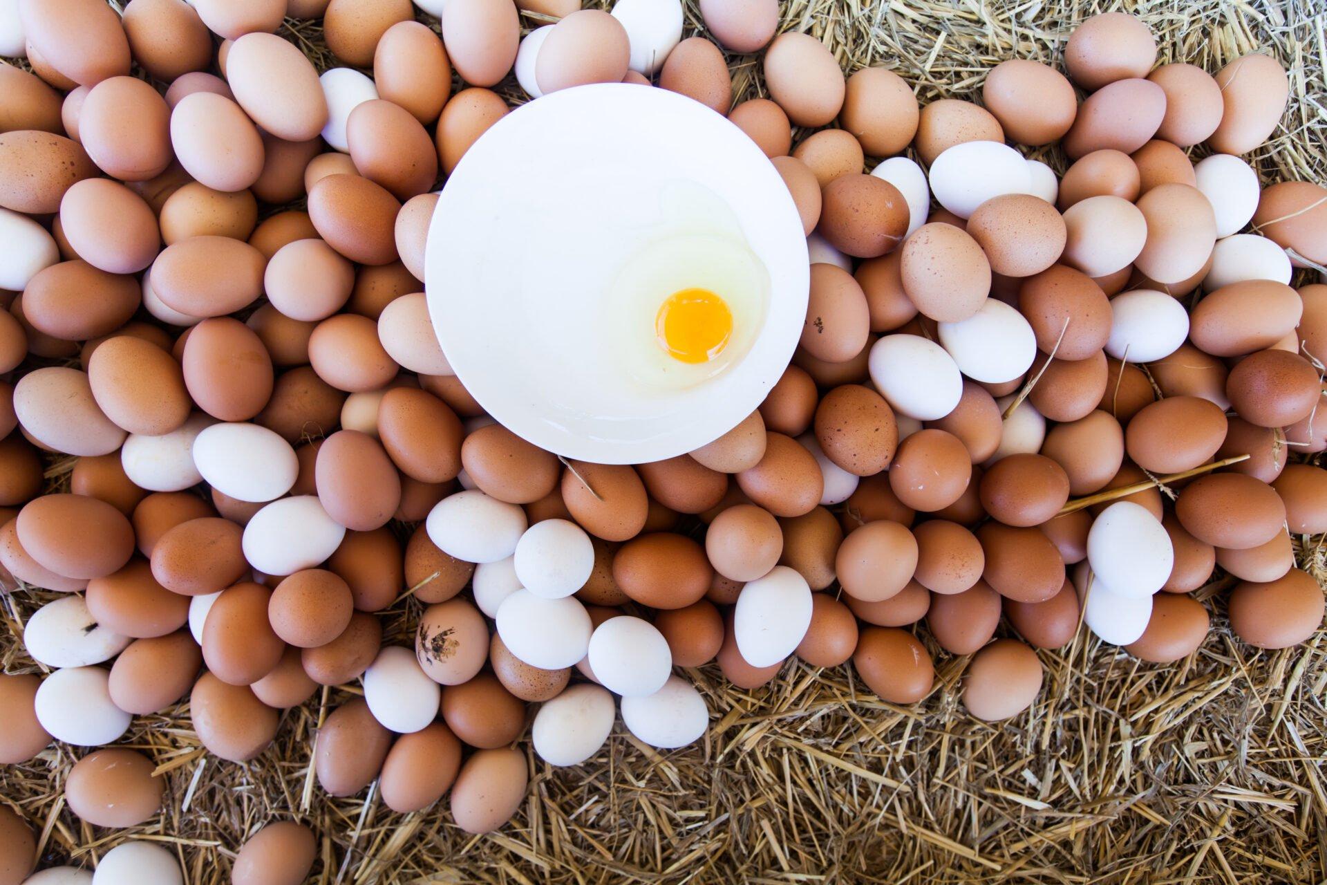 Fresh Domestic Eggs On Local Farmers Market Ready For Sale